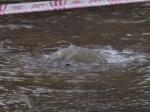 Из-за коммунальной аварии вЧаплыгине 12 тысяч человек остались без воды