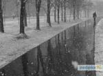 Сегодня надорогах Псковской области ожидается гололедица