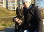 Жителя Башкирии могут привлечь кответственности из-за драки собак