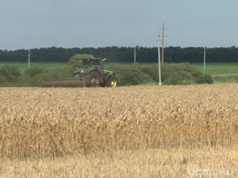Орловские аграрии получат 2 миллиарда рублей
