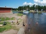 Пляжи Петербурга опасны для купания