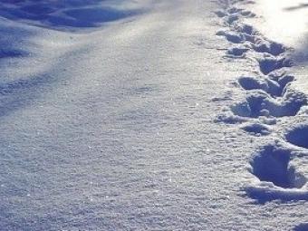 Февраль вМоскве будет холоднее января, ноаномальных температур неожидается
