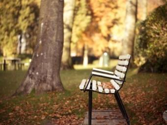 ВПензе планируется создать молодежный парк