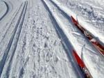 Ввоскресенье вРязани пройдет «Лыжня России-2015»