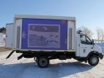 Детеныша морского котика, спасенного наСахалине отсобак, могут отправить воВладивосток