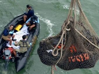 Почти 100 тел погибших вкрушении лайнера AirAsia извлечены изморя