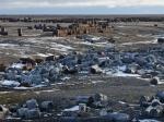 В России запланирована масштабная уборка территории
