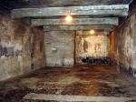 Выставка польских художников, где тема холокоста освещается вюмористическом ключе