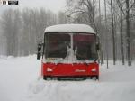 ВОренбургской области спасены 26 пассажиров сломавшегося натрассе автобуса