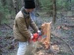 ВХарабалинском лесничестве задержали браконьеров