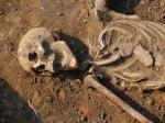 Между Кобылкино иВарежкой найден скелет неизвестного мужчины