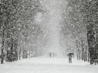 ВТюмени объявили штормовое предупреждение: обещают снег исильный ветер