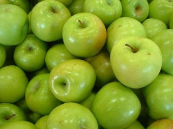 США одобрили генетически модифицированные яблоки