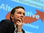 Социал-демократы побеждают навыборах вГамбурге— Данные exit poll
