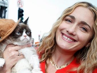 Сердитый котик встретился споклонниками вНью-Йорке