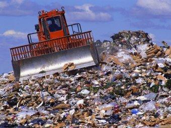 Собянин назвал список самых грязных парков столицы
