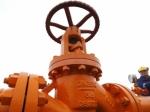 СМИ: Словакия, Венгрия, Румыния иБолгария согласовали строительство газопровода