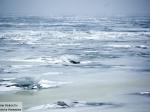 Более 20 рыбаков унесло нальдине вЧудском озере