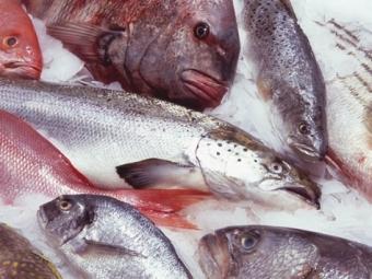 Росрыболовство выступит заэкспортные пошлины при высоких ценах нарыб
