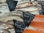 Житель Псковской области пожаловался насветящуюся рыбу