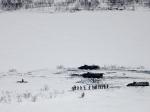 МинобороныРФ: Ядерные силы Северного флота вбоевой готовности