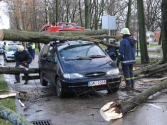ВГермании жертвами урагана стали три человека