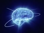 Неврологам удалось связать воедино разрозненные воспоминания