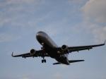 Ваэропорту Парижа аварийно сел самолет Air France