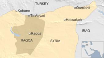 Награнице сТурцией курды отбили стратегически важный город у«ИГ»