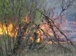 Около Чернобыльской АЭС появился пожар