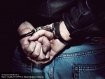 ВСербии задержали владельца турфирмы «Лабиринт»