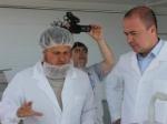 На открытии Истринской сыроварни присутствовал руководитель райадминистрации