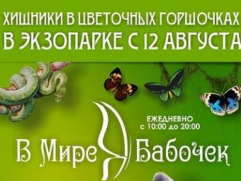 Насекомоядные растения можно увидеть на выставке в экзопарке Новосибирска