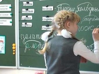 Три ножа в спину российского образования: до чего доведет школу новый стандарт