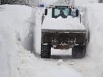 Жизнь в снегу
