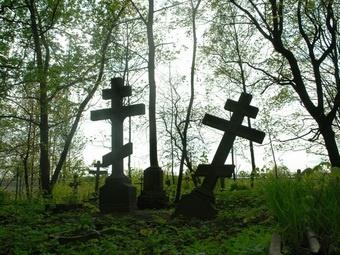 Руководство ПТК просит решить вопрос с участком Митрофаньевского кладбища