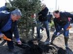 Во Владивостоке насчитали, что каждый квадратный метр убранной территории был завален 80-сантиметровым слоем мусора