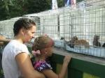 В Нижнем Тагиле на выставке животных несколько десятков питомцев обрели своих хозяев