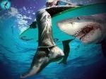 Ещё одно нападение акулы оставило мужчину без ноги