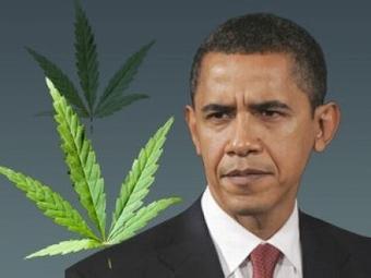 Барак Обама постепенно легализует курение марихуаны