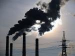 Экологическая мини-катастрофа в Подмосковье