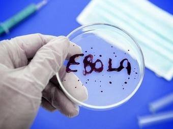 Медик из Нью-Йорка излечился от Эболы