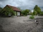 Бесплатно полученные земли в ДВФО нельзя будет продать зарубежным покупателям