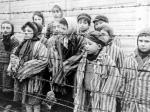 Комаровский: Польша сблагодарностью вспоминает советских солдат, освободивших Освенцим