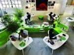 Экоофис: «зеленые» будни на работе с заботой о людях и природе