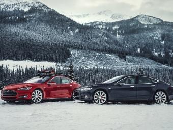 Tesla Model Sпризнали самым популярным электрокаром вРоссии