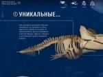 Самую большую коллекцию «Виртуальных музеев» предлагает «Культура.РФ»