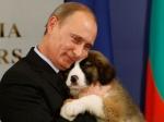 Путин: Ситуация наУкраине улучшится при исполнении минских решений