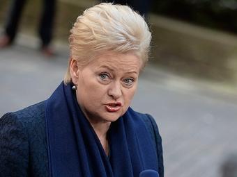 Президент Литвы: Россия нанас уже напала!