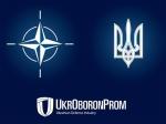 Заявления представителей НАТО показали, что альянс мечтает о«русском майдане»— Александр Грушко